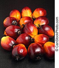 palme huile, fruit