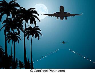 palme, sopra, luna, aereo, vettore, pista