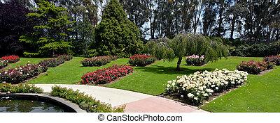 Palmerston,  nzl, norte, jardín, rosa