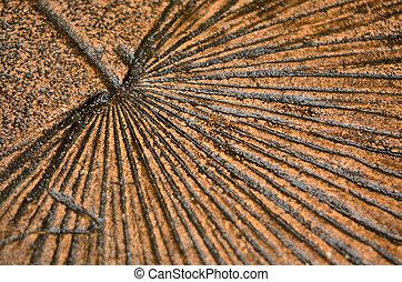 Palmetto imprint