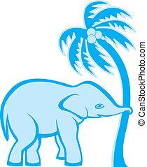 palmier, éléphant