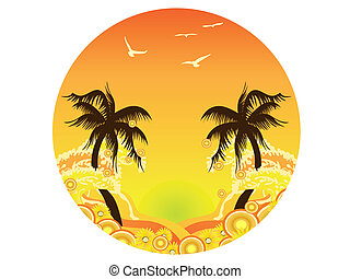 palmier, coucher soleil