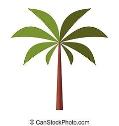 palmier, plat, icône