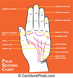 Palmistry map of the palm\'s main lines vector illustration...