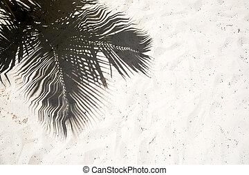 palmizi, gettare, ombre, su, il, liscio, sabbia dorata, di, uno, remoto, isola tropicale, spiaggia, in, dominicana, repubblica