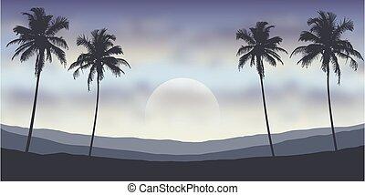 palmizi, tropicale, notte, paesaggio, montagne