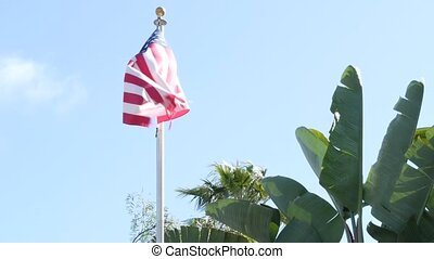Palms and american flag, Los Angeles, California USA. Summertime aesthetic of Santa Monica Venice Beach. Star-Spangled Banner, Stars and Stripes. Atmosphere of patriotism in Hollywood. LA vibes.