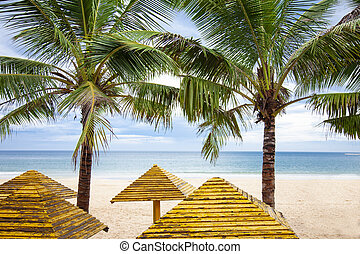 Palms and Sea relax tropical tourism lanscape