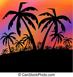 Palms black background