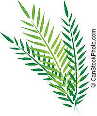 Palms illustration - Palms in Good Friday