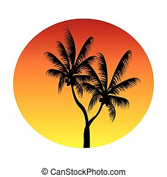 palms in sunset circle