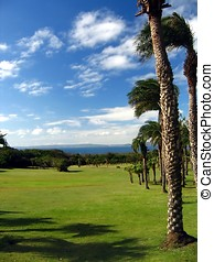 Palms, Meadows, Ocean and Sky - -- a scene in Kenting...