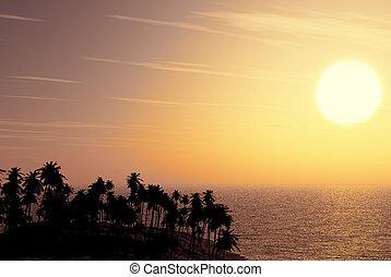 sand beach at sunset