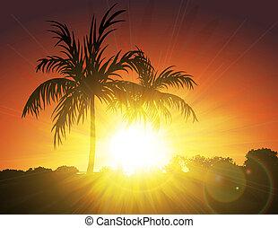 Palms on Sunset