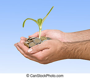 Palms with a plant growng from pile of coins