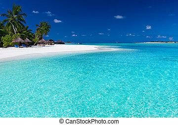 palmträdar, över, bedöva, lagun, och, vita strand