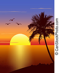 palmtree, coucher soleil, silhouette