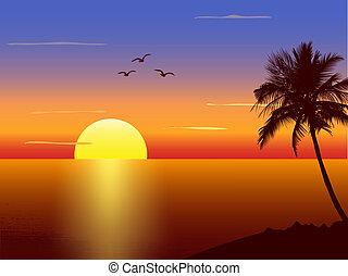 palmtree, ocaso, silueta