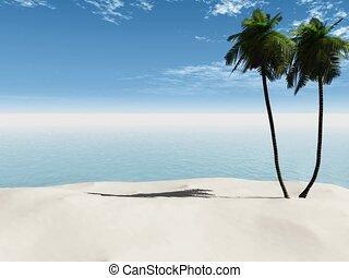 Palmtrees on a sandy beach.