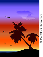 palmtrees, paisaje