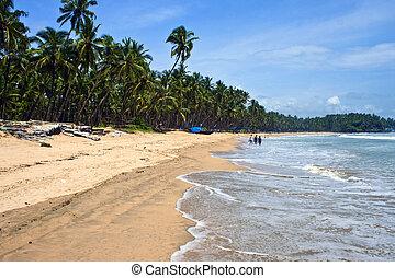 palolem, goa, india, -, paraíso tropical, playa