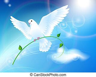 paloma de la paz, en, el, cielo