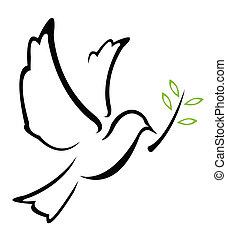 paloma, paz, vector