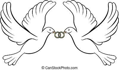 palomas, boda, caricatura, dos, icono