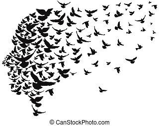 palomas, cabeza, el volar lejos, humano