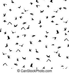 palomas, y, palomas, silueta, seamless, patrón, blanco, plano de fondo, para, paz, concepto, y, boda, design., vector