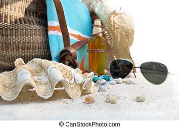 palourde géante, plage, accessoires
