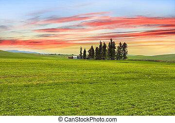 Palouse landscape with colorful sky background