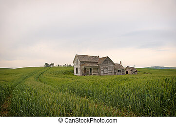 palouse, verlaten, homestead