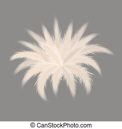 Pampas silver grass starshaped bouquet on grey background. ...