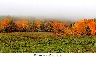 Pan Across Fog Over Top Of Vibrant Hillside During Fall...