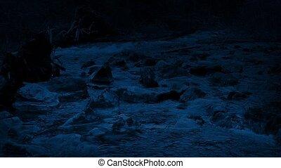 Pan Across Wild River Shore At Night