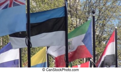 Pan on International Flags.