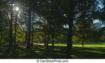 pan shot light and shadow central park part I