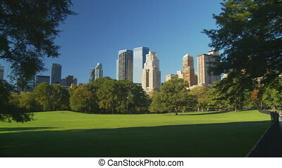 pan shot light and shadow central park part II