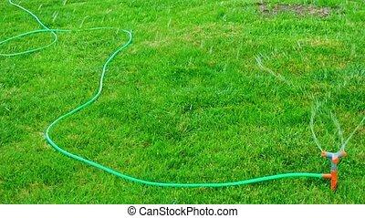 Pan shot of lawn sprinkler head working in slomo - Pan shot ...