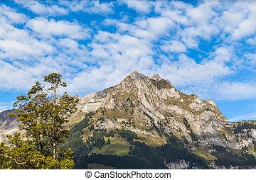 Panaroma view of the Alps in Engelberg valley - Panaroma ...