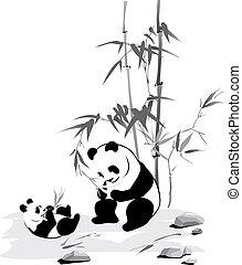Panda and baby eat a bamboo