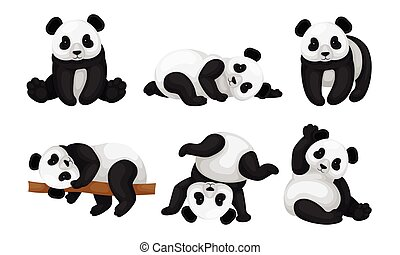 Panda Animal in Different Poses Vector Set. Bear Lying on the Tree and Turning Upside-down on the Ground