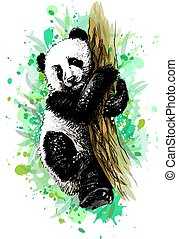 Panda baby cub sitting on a tree from a splash of watercolor