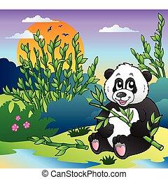 panda, bosque de bambú, caricatura