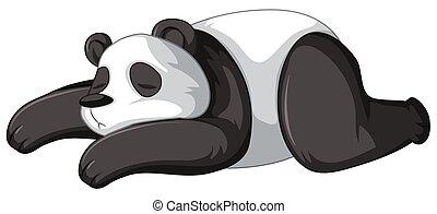 panda, dormir, fond blanc