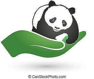 panda, em, mão, símbolo, de, ecologia, e, natureza, proteção