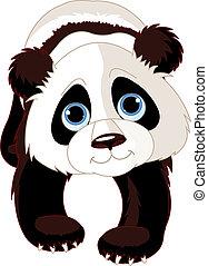 panda, gehen