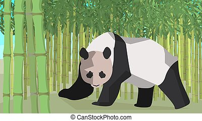 Panda in a bamboo grove, animal, nature