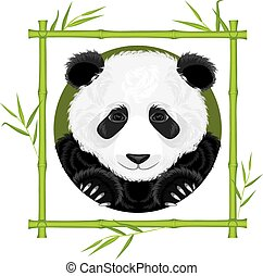 Panda in the bamboo frame